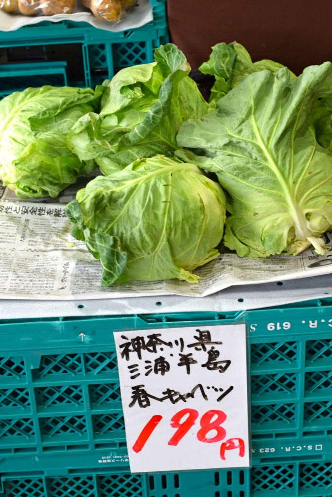Japanese spring cabbage at vegetable stall